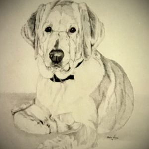 "11.5"" x 14"" charcoal - In The Collection Of Owner"
